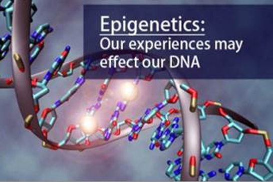 voorstelling DNA - Epigenetics: our experiences may effects our DNA